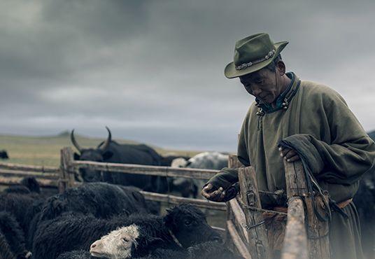 Mongolian yak farmer - Huntsman and Tengri's rare Khangai Noble Yarns